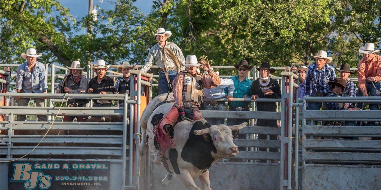 Bringing in the bulls