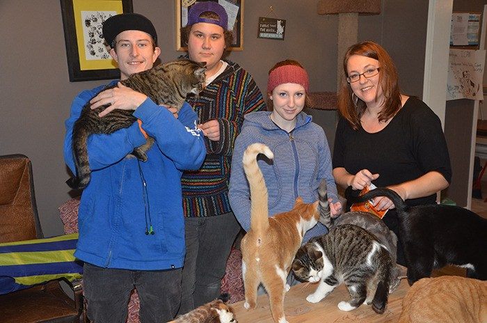 Open Doors students help out ICAN as part of work experience program