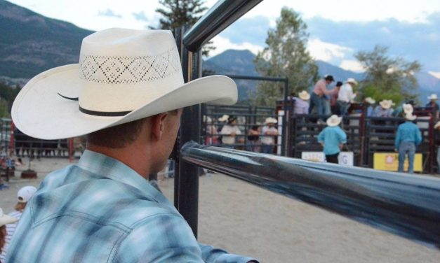 Up close at the rodeo