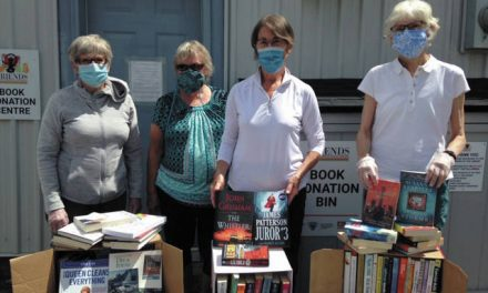 The BIG Book Sale, pandemic style