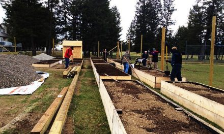 Radium Rotary realizes community garden project