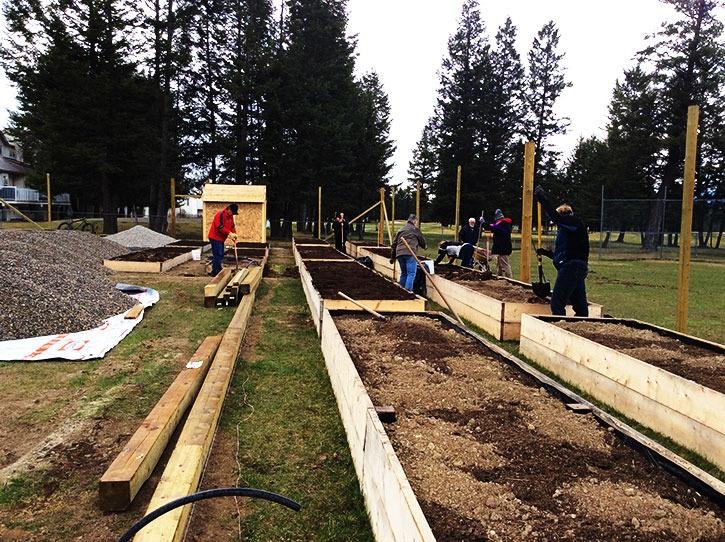 Radium Rotary realizes community garden project