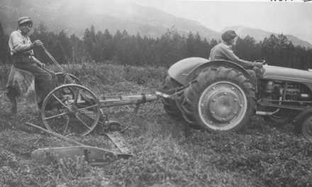 Old time mowing