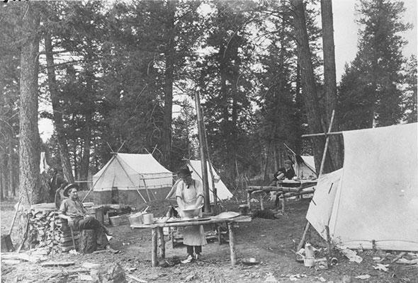 Surveyor's Camp