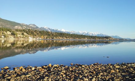 Columbia Valley shore cleanup set for September 25th