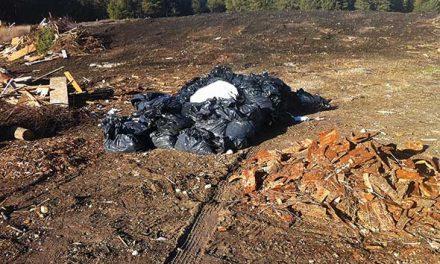 RDEK seeks publics assistance in identifying illegal dumpers