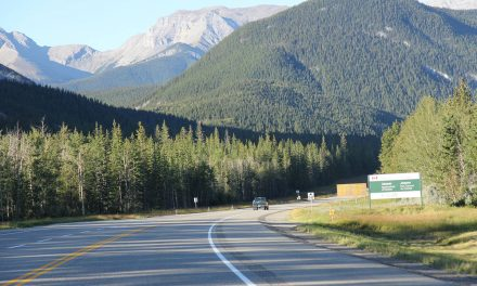 Searchers find bodies in Jasper National Park, remains believed to be missing couple