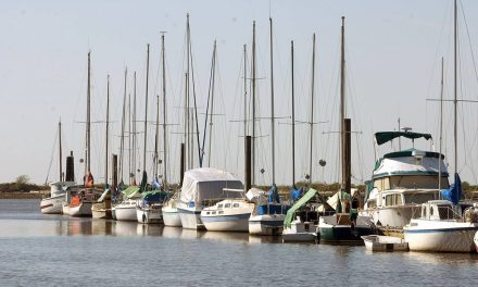 U.S. boater fined $1,000 for violation of Quarantine Act