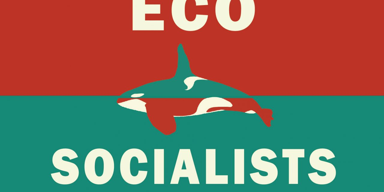 Ecosocialists pull all B.C. electoral candidates amid transphobia allegations