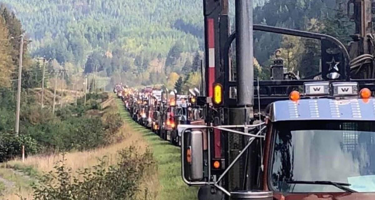 B.C. VOTES 2020: NDP vows log quotas, community building fund