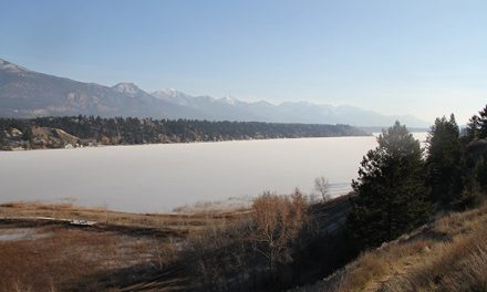 Cold snap prompts lake freeze