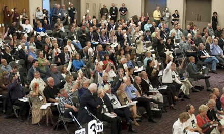 Columbia Valley mayors, directors revisit UBCM