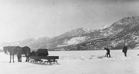 Frozen foraging, 1940s