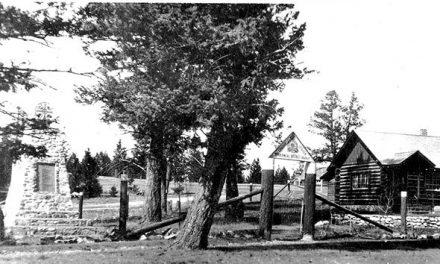 Legion log cabin