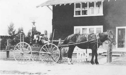 Horse power, 1925