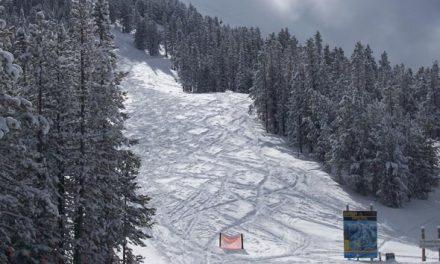 2012-2013 Ski Preview