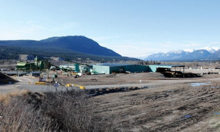 Canfor announces plan to reopen Radium mill