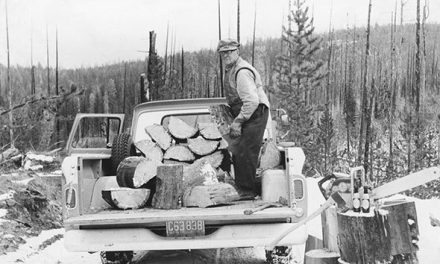 Friends foraging for firewood, 1963