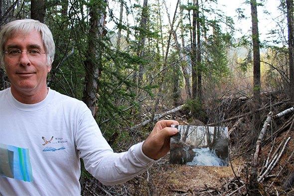 Windermere Creek facing overwhelming stress