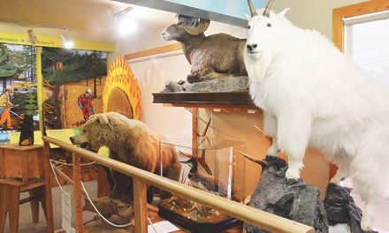 Community donations support Radium wildlife display