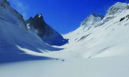 Local skier dies in a freak backcountry accident
