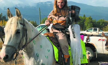 Halloween Horse March trots in Invermere