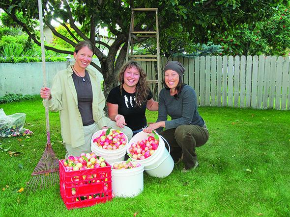 Harvesters seek helping hands