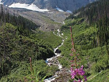 Celebrate Canadas Parks Day in Kootenay National Park