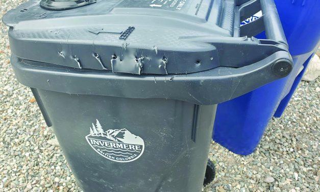 Bears break into new residential garbage bins